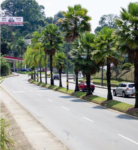 Doble Calzada Vía Las Palmas