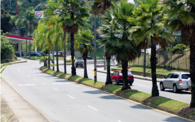 Construcción doble calzada vía Las Palmas, Medellín – Antioquia